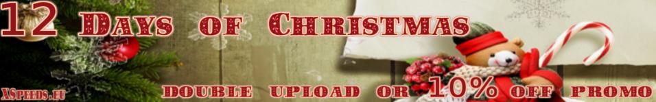 12 Days of Christmas Promo